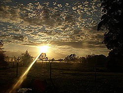 SUNRISE AT THE WORKERS' COTTAGE IN RALEIGH NSW