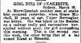 SNAKE BITE The Advertiser 2 (Adelaide, SA 1889-1931), Friday 17 March 1911,