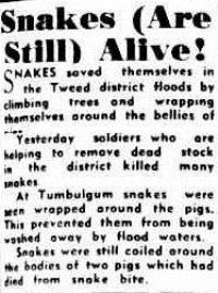 The Courier-Mail (Brisbane, Qld. 1933-1954), Saturday 16 June 1945