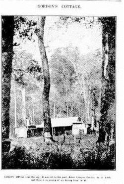 COTT Western Mail (Perth, WA 1885-1954), Thursday 19 July 1934,