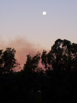 fullmoon and cane fires in june