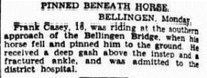 horse pinned The Sydney Morning Herald (NSW 1842 - 1954), Tuesday 10 January 1933,