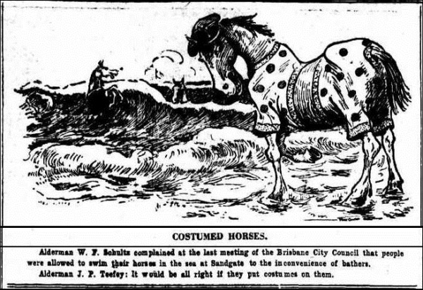 HORSE SWIM The Brisbane Courier (Qld. 1864 - 1933), Saturday 9 October 1926