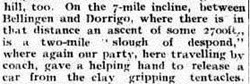 DORRIGO 4 Clarence and Richmond Examiner (Grafton, NSW  1889 - 1915), Saturday 26 April 19132
