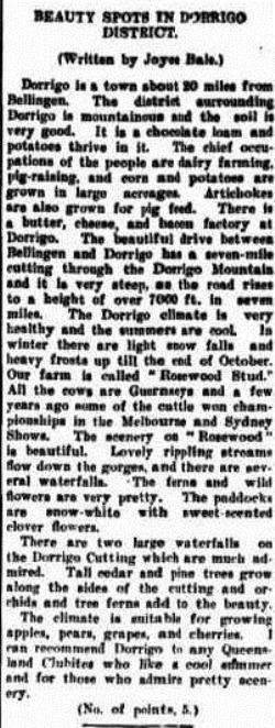 DORRIGO Morning Bulletin (Rockhampton, Qld. 1878 - 1954), Tuesday 15 November 1938