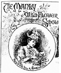 flower manl Illustrated Sydney News (NSW 1853 - 1872), Thursday 19 September 1889,