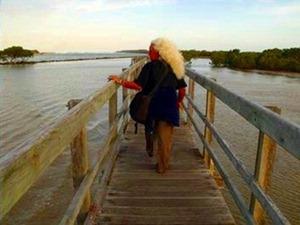 lynne footbridge3