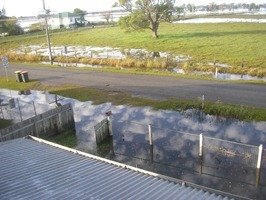 FIRST DAY OUT 001