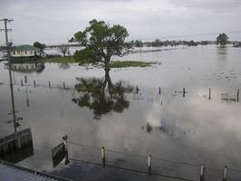 FLOODS MORE 046