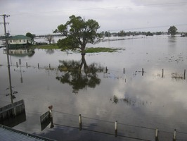 FLOODS MORE 046
