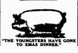 XMAS PIG Albany Advertiser (WA 1897 - 1950), Monday 18 December 1933,