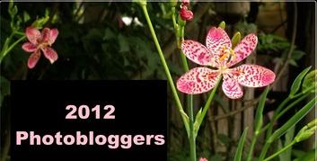 2012 photobloggers 2