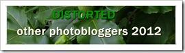 photobloggers 2