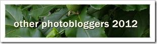 photobloggers