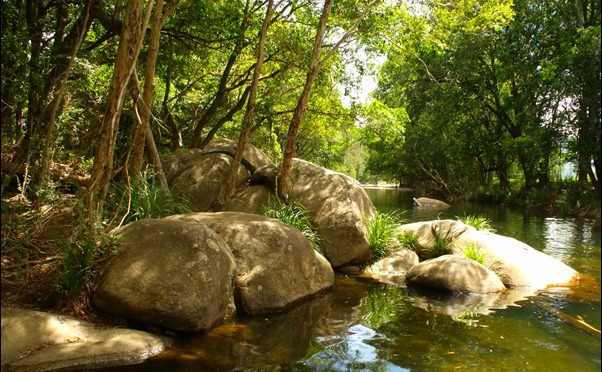 G is for GLENIFFER. | A-Z ARCHIVE : NELLIBELL49 ON THE BELLINGER RIVER IN 2012